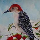 WOODY WOODPECKER by Marilyn Grimble