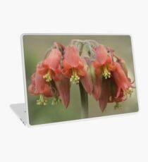 Cotyledon flower Laptop Skin