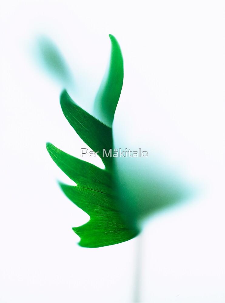 Diffuse Green Beauty by Per Mäkitalo