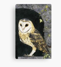 The Church Owl Canvas Print