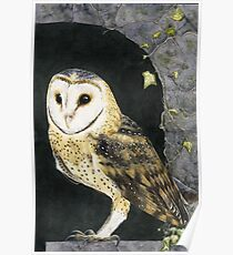 The Church Owl Poster