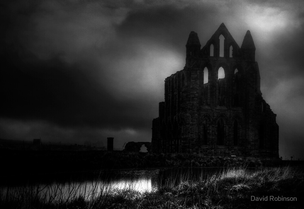 Whitby Abbey by David Robinson