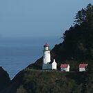 Heceta Head Light House by Julie Beitzel