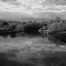 B&W Boyne River by Martina Fagan