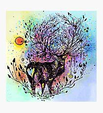 Cosmic Deer  Photographic Print