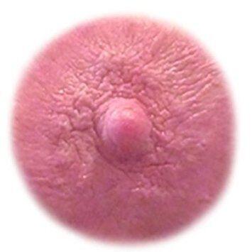 Nipple by atmasberg