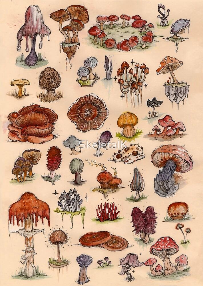 Watercolour Mushroom/Fungi Sheet by SkeletalK