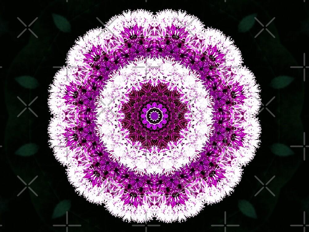 Allium Manipulation by Karen Stahlros