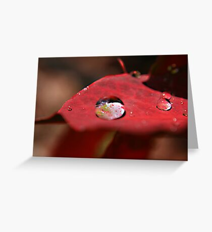 Droplet Greeting Card