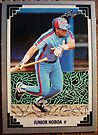 394 - Junior Noboa by Foob's Baseball Cards