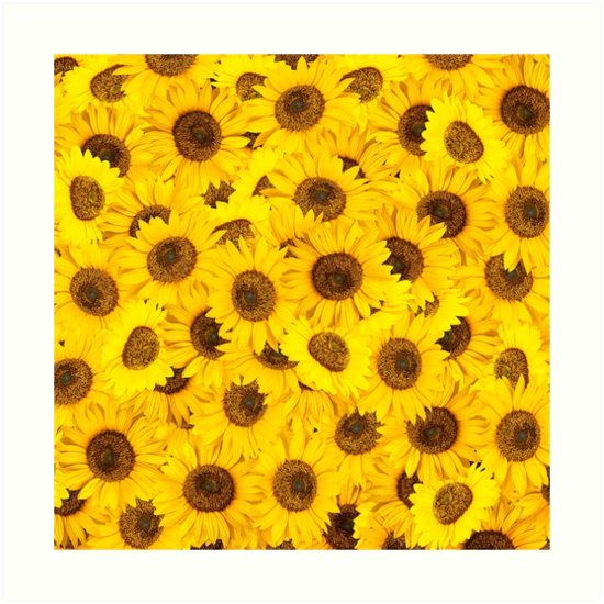 Lots of sunflowers by eyeconart