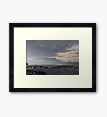 seascapes #190, salmon pods Framed Print