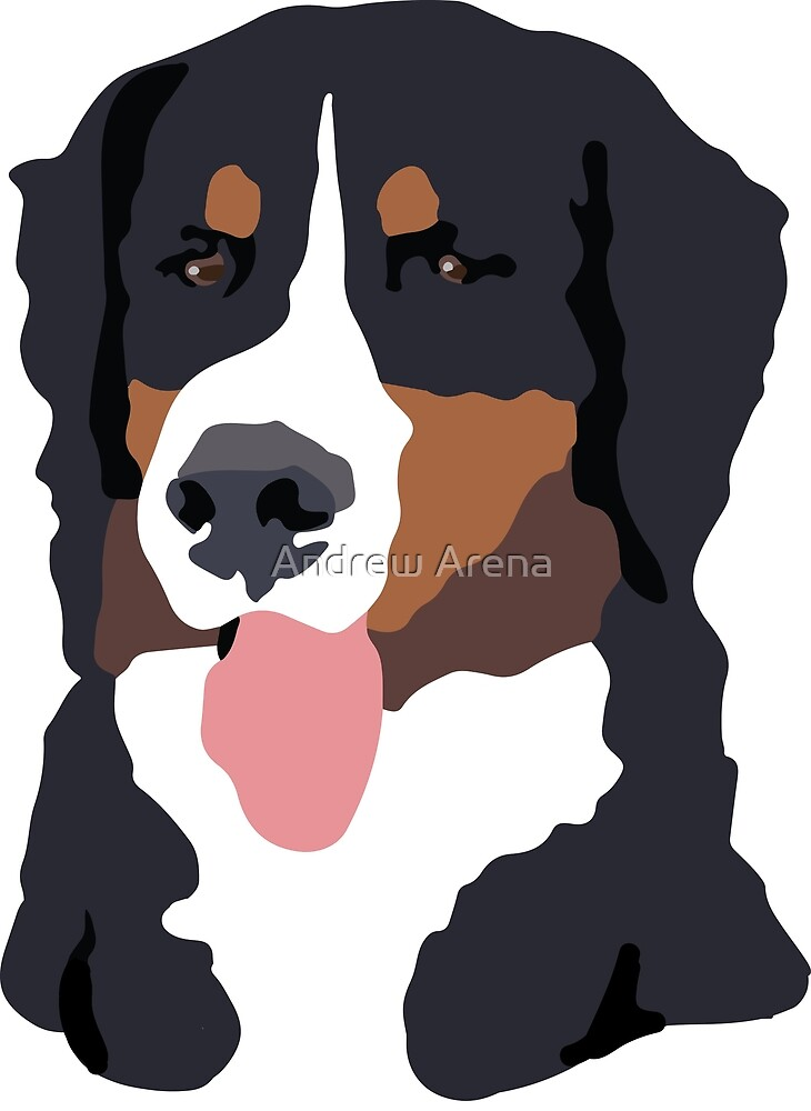 Bernese Mountain Dog by Andrew Arena