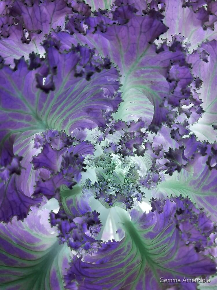 Leaves of lettuce by Gemma Amendola