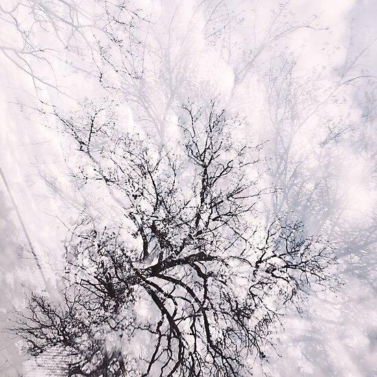 TREES ON TREES ON TREES by Truckula