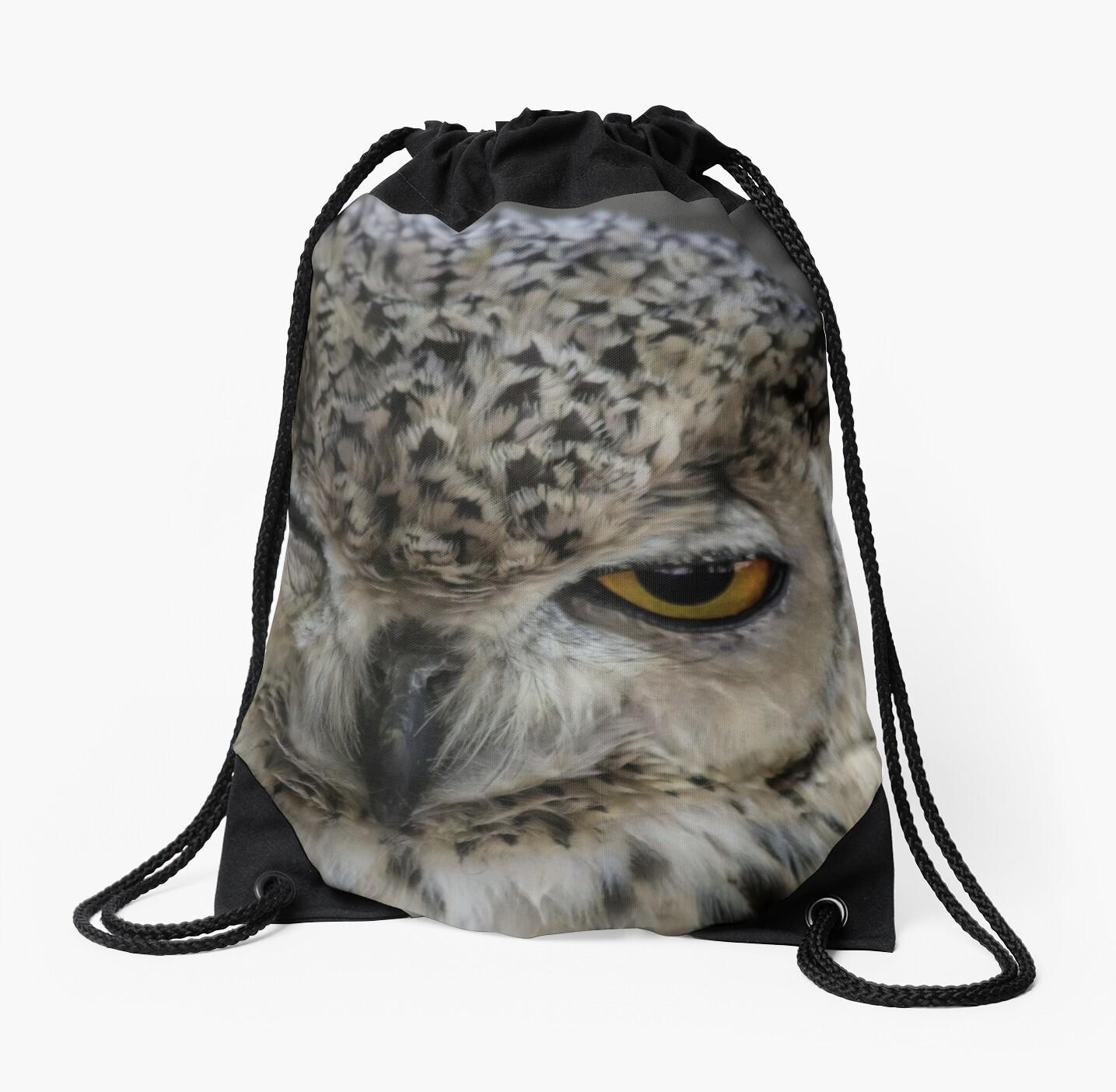 Winking Owl  by Dawn van Doorn