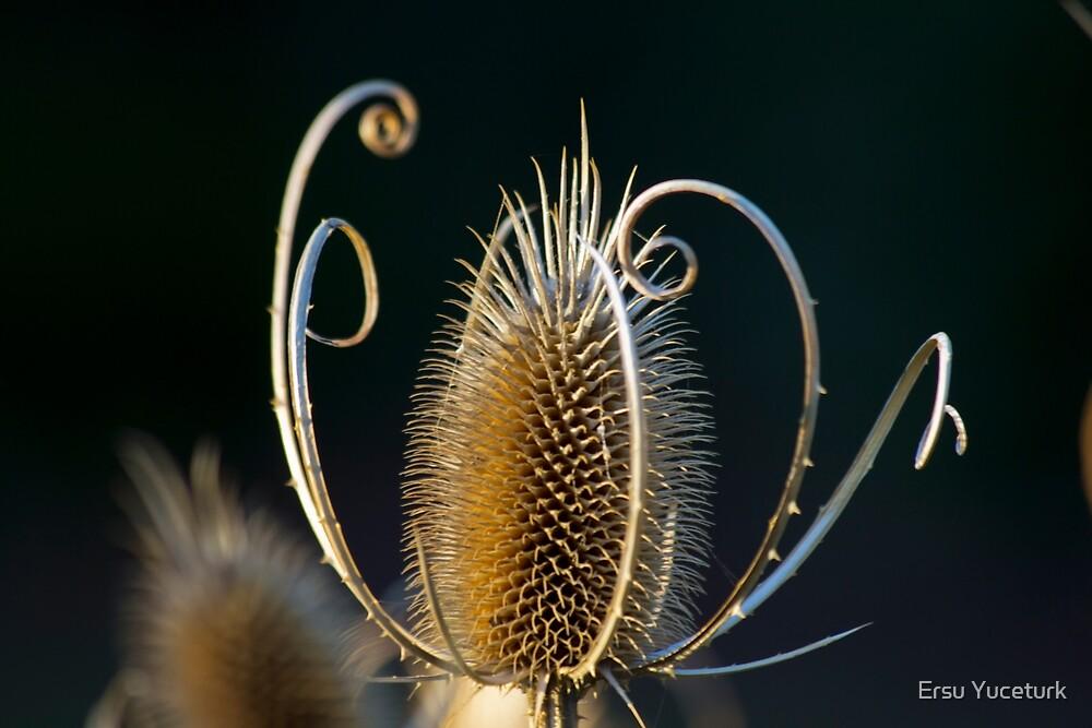 Sceptre of Thorns by Ersu Yuceturk