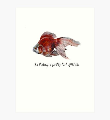 As Lacking In Privacy As A Goldfish Art Print