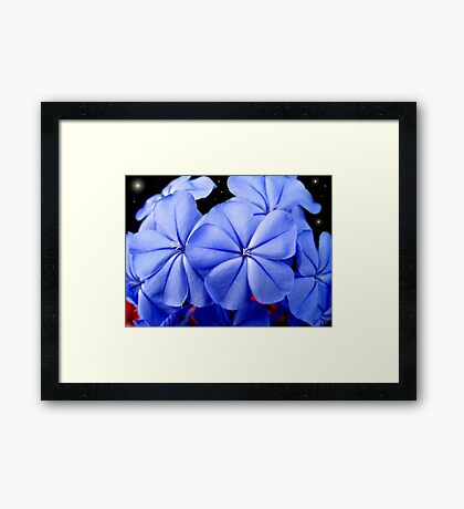 Together...  A Calming Peace Framed Print