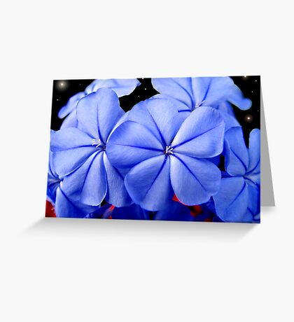 Together...  A Calming Peace Greeting Card