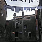 Wash 'n dry in Venice by gluca