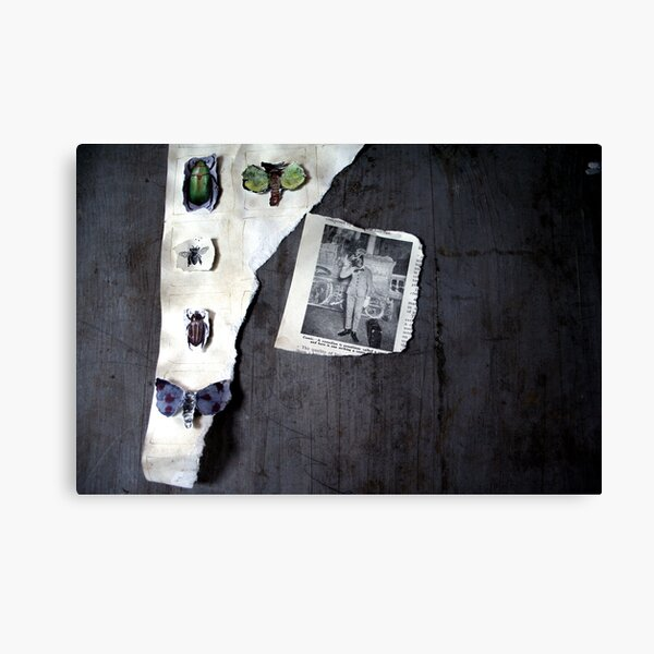 in that house Canvas Print