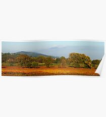 Autumn in Provence vineyard Poster