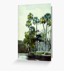 Homosassa River, fine art painting Greeting Card
