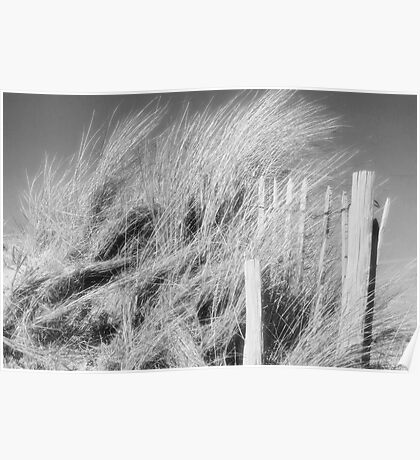 The Dunes - black and white Poster