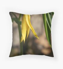 Early Spring Wild Oats Throw Pillow