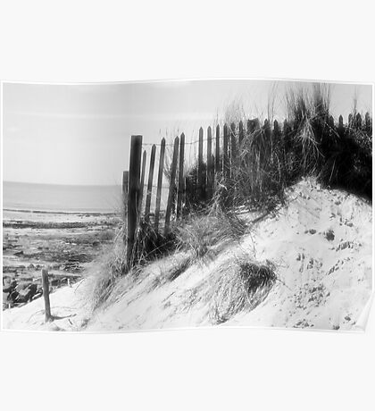 From the Dunes - Black and White Poster