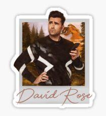 David Rose Polaroid Sticker