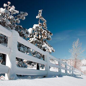 White Fence by valentina9