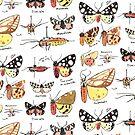 Tiger Moths Art Study by Mary Capaldi