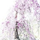 Weeping Cherry Tree by AngieDavies