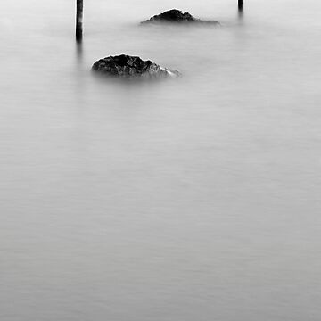 Black&white evanescence by BarbaraCorvino