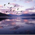 Geese Over Glacier Lake by Wayne King