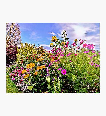 Cottage Garden Flowers Photographic Print