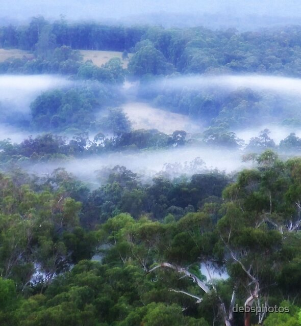 """""""Blue Mist"""" by debsphotos"""