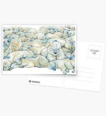 Postales Polar Wall
