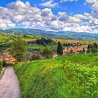 The road to Greve, Tuscany by Viv Thompson
