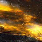 golden river by Perggals© - Stacey Turner