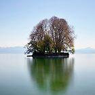 The little Island.....Lake Geneva by Imi Koetz
