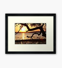 Thank you Lord for another beautiful day! Framed Print