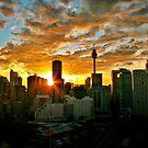 Sunrise over sydney by Throwing  Buckets Magazine