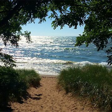 Beach Path by Mommylife