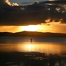 Lone fisherman at Wallis Lake by Alexander Meysztowicz-Howen