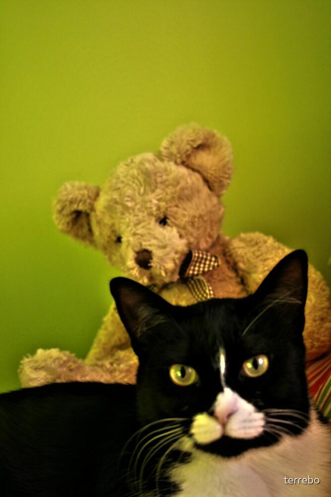Big Teddy And Tuxedo Cat by terrebo