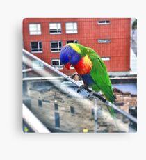 Birdie in Paradise Canvas Print