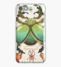 Beetle Collection iPhone Case/Skin